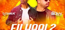Filhaal 2 Mohabbat (Remix) – DJ Dharak x DJ Sukhi